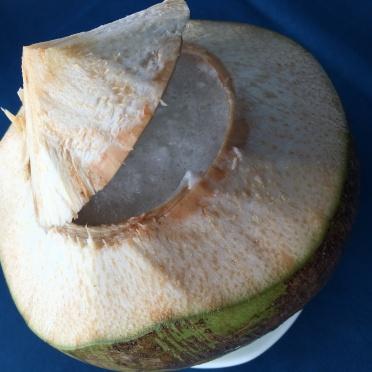 coconut - thailande - lectourebangkok