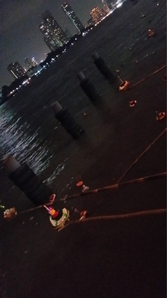 fete-des-lanternes-the-asiatique-2-27.jpg.jpeg