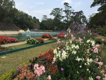 chiang mai - palace bhubing (4)