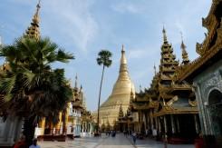 shwedagon pagoda (14)