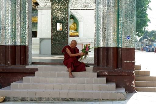 shwedagon pagoda (15)