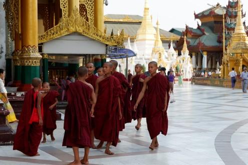 shwedagon pagoda (17)