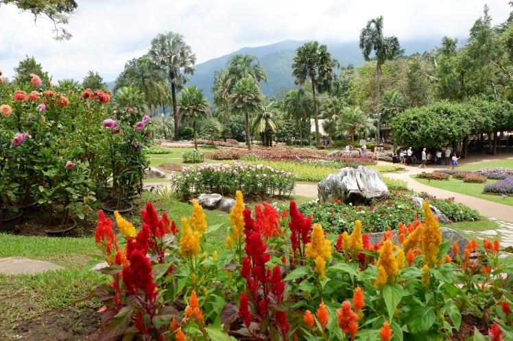 chiang rai - mae fah luang garden (7)