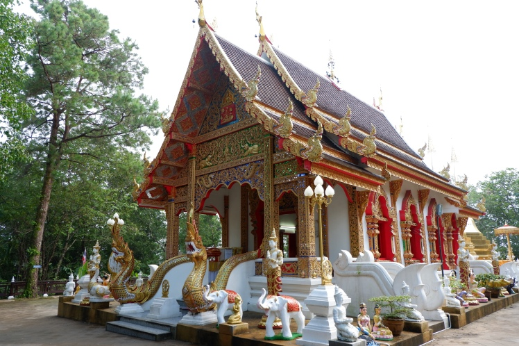 chiang rai - wat phra that doi tung (1)