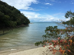 parc national de penang - randonee vers monkey beach 2 (3)