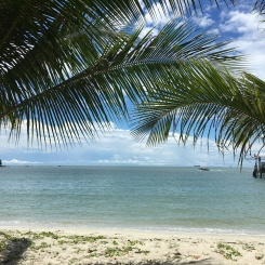 parc national de penang - randonee vers monkey beach 2 (4)