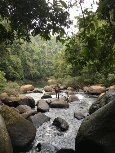 jungle de khao sok - parc national (7)
