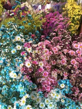 thailande - chiang mai - flower market - ton lam yai market (2)