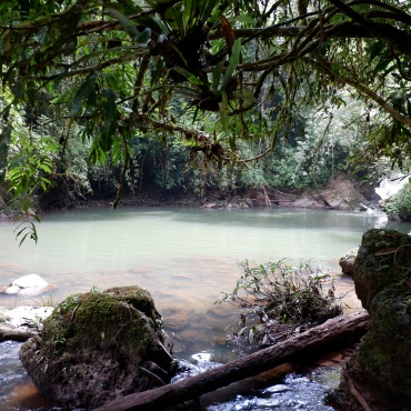 gibbon experience - laos - foret jungle - tyrolienne - elodithello (4)