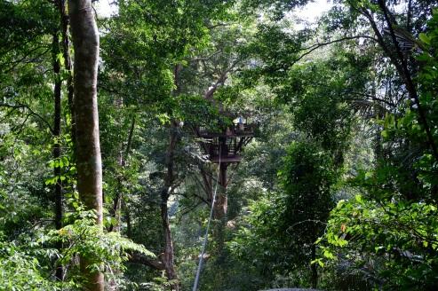 gibbon experience - laos - tree house - elodithello (1)