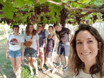 khao yai vignobles pb reserve - thailande - elodithello 2